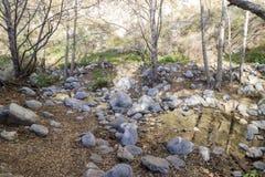 Hiking at Eaton Canyon Falls Trail Royalty Free Stock Photos