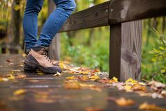 Hiking in fall stock images