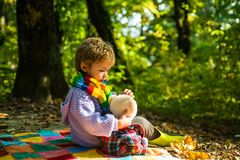 Hiking with favorite toy. I will show you beauty of nature. Inseparable with toy. Boy cute child play with teddy bear stock photos