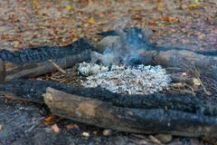 Hiking fire place bbq in forest with small fire and ash royalty free stock photos