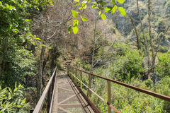 Hiking in Fish Canyon Falls Trail. Los Angeles royalty free stock images