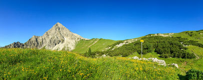 Hiking on flower meadow and steep mountain. Signpost gives directions. Stock Photos