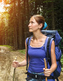 Hiking in the forest Stock Photography
