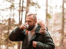Hiking in forest. Camp, adventure, traveling concept. Camp, adventure, traveling and friendship concept. Man with a backpack and beard hiking in forest royalty free stock photography