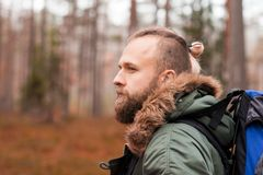 Hiking in forest. Camp, adventure, traveling concept. Man with a backpack and beard hiking in forest. Camp, adventure, traveling concept stock image