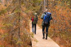 Hiking in forest. Camp, adventure, traveling concept. Two bearded guys with backpacks hiking in forest. Camp, adventure, traveling and fishing concept royalty free stock photo