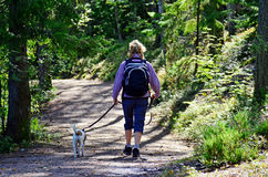 Hiking in forest III. Woman hiking with her dog on forest Royalty Free Stock Photos
