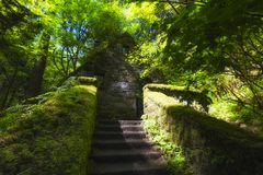 Abandoned Stone Structure covered with plants Royalty Free Stock Photography