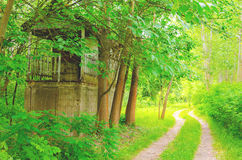 Hiking in the forest... - path and abandoned wooden house Royalty Free Stock Photography