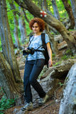 Hiking on a forest trail Royalty Free Stock Photography