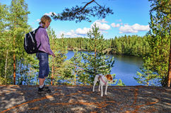 Hiking in forest V. Woman hiking with her dog on forest Stock Photos