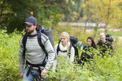 Hiking Friends Walking Amidst Plants In Forest Royalty Free Stock Photography