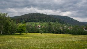 Meadow with forest and cloudy sky stock photos