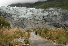 Hiking in Glacier valley. Hiking in Franz Josef Glacier valley in Westland National Park. West Coast of New Zealand's South Island Royalty Free Stock Photography