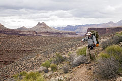 Hiking in Grand Canyon. A backpacker hikes along the Tonto Trail in Grand Canyon National Park in Arizona Royalty Free Stock Images