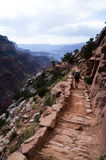 Hiking in Grand Canyon. Hikers on the trail path, Bright Angel Trail in Grand Canyon Royalty Free Stock Photos