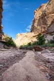 Hackberry Canyon wash Grand Staircase Escalante. Hiking into the Grand Staircase in Utah. Close to the Arizona Border, this canyon is a favorite for hikers royalty free stock image