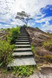 Hiking the granite stairway in the jungle, mahé, seychelles 2. Hiking a granite stairway to the top of a hill in the jungle in the mountains on mahé Stock Images