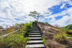 Hiking the granite stairway in the jungle, mahé, seychelles 3. Hiking a granite stairway to the top of a hill in the jungle in the mountains on mahé Stock Image