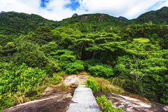 Hiking the granite stairway in the jungle, mahé, seychelles 5. Hiking a granite stairway to the top of a hill in the jungle in the mountains on mahé Royalty Free Stock Photos