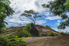 Hiking the granite stairway in the jungle, mahé, seychelles 1. Hiking a granite stairway to the top of a hill in the jungle in the mountains on mahé Stock Images