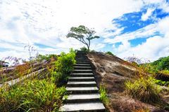 Hiking the granite stairway in the jungle, mahé, seychelles 3. Hiking a granite stairway to the top of a hill in the jungle in the mountains on mahé Royalty Free Stock Image