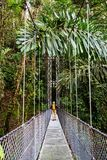Hike in Costa Rica Stock Photos