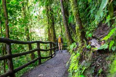 Hike in Costa Rica Royalty Free Stock Images