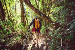 Hike in Costa Rica Royalty Free Stock Photo