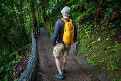 Hike in Costa Rica Royalty Free Stock Image