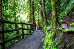 Hike in Costa Rica. Hiking in green tropical jungle, Costa Rica, Central America Royalty Free Stock Images