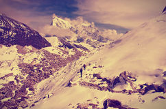 Hiking group on a trail. Ngozumba Glacier, Sagarmatha National P Royalty Free Stock Photo