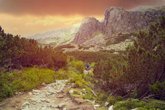 Hiking in high mountains sunset Stock Image