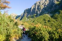 Hiking in the High Tatras National Park, Slovakia Royalty Free Stock Image