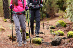 Hiking - Hikers walking in forest with poles. On path in mountains. Close up of hiker shoes boots and hiking sticks poles. Man and women hiking together Stock Photos