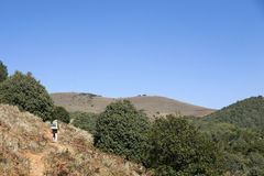 Hiking through the Hills. A hiker walks along a trail to the top of a hill in Yunnan Province, China Royalty Free Stock Image