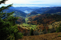 Hiking impressions in the Black Forest in Germany. Hiking through beautiful nature and landscape in the Black Forest in Germany royalty free stock photos