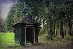Hiking impressions in the Black Forest in Germany. Hiking through beautiful nature and landscape in the Black Forest in Germany stock photo