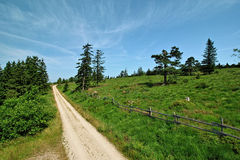 Hiking impressions from the Black Forest, Germany Royalty Free Stock Photography