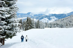 Hiking In Winter Mountains Stock Images
