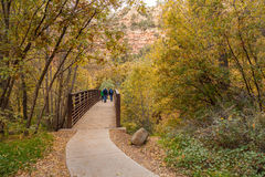 Hiking int West Fork in Fall. Hiking into the scenic west fork of oak creek near Sedona Arizona in fall Stock Photos