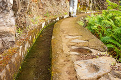 Hiking on the island Madeira Royalty Free Stock Images