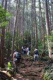 Hiking in Japan Stock Images
