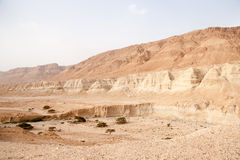 Hiking in judean desert, Israel near Dead Sea Stock Photos
