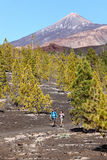 Hiking landscape Teide, Tenerife Royalty Free Stock Photography