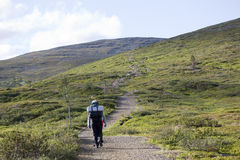 Hiking in Lapland Stock Photography