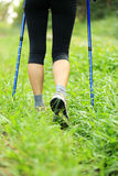 Hiking legs on green grass Stock Image
