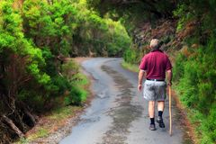 Hiking Madeira royalty free stock images