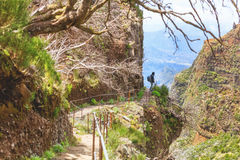 Hiking in Madeira royalty free stock photos