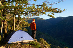 Hiking man, Black Forest, Germany Royalty Free Stock Photo
